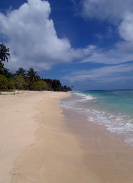 Ha'apai Beach